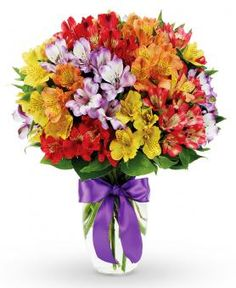 Assorted Color Peruvian Lilies: http://www.avasflowers.net/product/assorted-color-peruvian-lilies