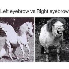 The struggle between your left eyebrow vs your right eyebrow is real