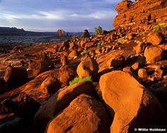 """Land of Standing Rock"" Maze district of Canyonlands National Park, Southern Utah, red orange. Favorite"