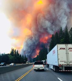 21 Best California Fires images