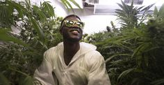 An athlete becomes a legal marijuana grower and part of an emerging debate