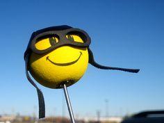 Car Accessory Antenna Ball NCAA College Football Oregon Ducks Antenna Topper