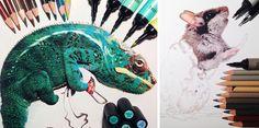 Dibujos de animales realistas rodeados con los materiales usados para su creación