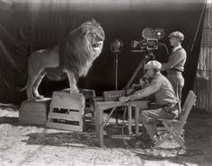 If you have ever watched a film by Hollywood studio Metro-Goldwyn-Mayer, you undoubtedly remember a lion roaring in the opening credits. The first filming of the now world famous MGM opening credits occurred in Hope that lion got royalties. Rare Historical Photos, Rare Photos, Vintage Photographs, Vintage Photos, Vintage Stuff, Metro Goldwyn Mayer, History Photos, History Books, Asian History