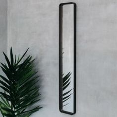 Our Slim Blackbeam Mirror exudes industrial chic, a trend that can be adapted to suit a number of interior palettes. Rectangular Mirror, Black Mirror Frame, Bedroom Accessories, Lounge Mirrors, Mirror Wall, Black Mirror, Glass Mirror, Mirror, Industrial Chic