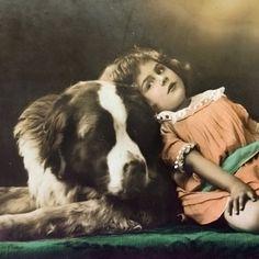 Antique dog photo postcard, Saint Bernard dog with girl, 1910s