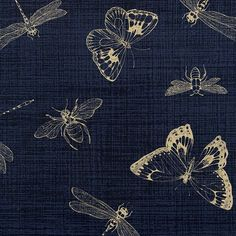 Wilmington Prints - Indigo Nature Insect Toile Indigo - cotton fabric