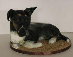 Beloved collie dog pet