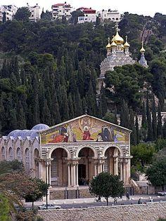 443 Mejores Imágenes Sobre Israel En Pinterest Tierra Santa Jerusalén Israel Y Lugares