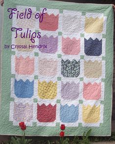 An Original by Sheila Baker Hand quilted Custom Baby lone stat quilt