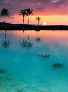 Zen at sunset.