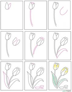 Draw a Tulip · Art Projects for Kids Easy Flower Drawings, Flower Drawing Tutorials, Cute Easy Drawings, Art Drawings For Kids, Doodle Drawings, Drawing For Kids, Doodle Art, Art Worksheets, Flower Doodles