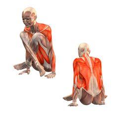 Scale pose lotus variation - Tolasana - Yoga Poses | YOGA.com