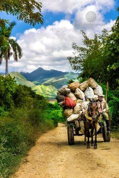 flic.kr/p/Kjjsek | Regreso del Valle | Valle de los ingenios, Trinidad, #Cuba www.reycubaphotog...