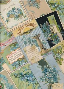 Nice-Lot-of-25-VICTORIAN-FORGET-ME-NOTS-blue-FLOWERS-greetings-Postcards-sss74
