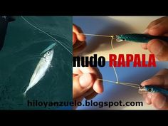Nudos de Pesca para Señuelos. Nudo RAPALA | Lure fishing knots - YouTube
