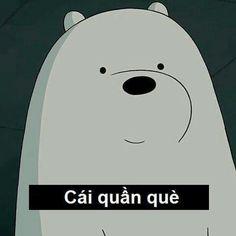 Ice Bear We Bare Bears, We Are Bears, Cute Love Memes, Cute Quotes, Funny Photos, Funny Images, Bear Meme, Bear Wallpaper, Cute Cartoon Wallpapers