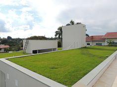 Telhado Verde e Jardim Vertical | Ecotelhado