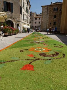 pitigliano flower festival in June