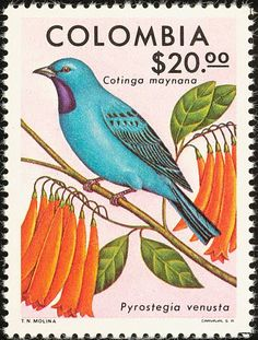 Colombia bird postal stamp