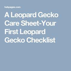 A Leopard Gecko Care Sheet-Your First Leopard Gecko Checklist