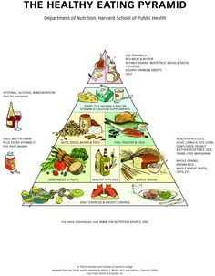 Healthy Food Pyramid Feel free to surf to my site only at http://www..dietplaninfo.com