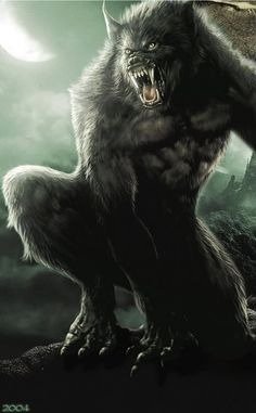 Werewolf - A human that turns into a human-like wolf during a full moon, who stands on their two legs but looks and behaves as a wolf. The werewolf loses any remembrance of their human identity upon transformation, usually going on a deadly rampage Mythological Creatures, Fantasy Creatures, Mythical Creatures, Van Helsing Werewolf, Wolf Hybrid, Werewolf Art, Werewolf Tattoo, Vampires And Werewolves, Monsters