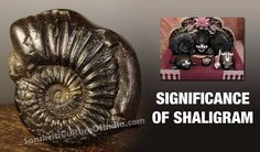 http://www.sanskritimagazine.com/indian-religions/hinduism/significance-of-shaligram/
