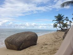 The Beach at Gran Melia Resort, Rio Grande is sandy enough to walk on, but there's coral that makes it rough for walking without water shoes--but great for snorkeling!