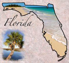 Florida Term Life Insurance Quotes - No Medical Exam! |  #florida
