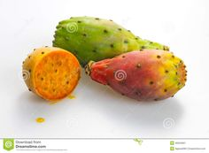 fresh-juicy-opuntia-indian-fig-fruits-white-background-46504697.jpg (1300×957)