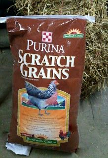 Scratch - Crack for Chickens - A Homemade Winter Treat for Chickens