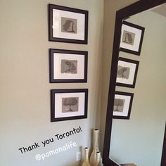 Thank you Toronto! What a beautiful room @danceologytoronto Thank you for sharing.  This was a special commission I did last year. #treeart #zen #homedecor   Have a message? Special occasion? Want a tree?  Visit www.acurrie.com for details or email andrea@pomonalife.com  Art is community x~a. #acurrie #creatinglifeart #pomonalife  #torontoartist #toronto #torontoart #torontolife #commission #art #treelove #artlife #tdot #yyz #artislife #natureart #pointillism #yyz #draw #thankyou #thankyouto