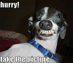 When sum 1 takes u a pic and u are lyk....