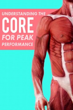 Understanding your core for peak performance in any sport and a core workout for more than abs