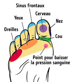 Sur nos pieds, denombreux points correspondent ànos organes internes etenles massant, nous avons lepouvoir d'améliorer notre bien être. Sympa-sympa.com temontre les points les plus importants ett'indique comment les masser pour que tupuisses tesentir ensuper forme.