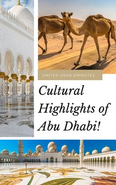 #AbuDhabi is far more quiet and conservative than Dubai and offers visitors a more authentic glimpse of #UAE culture. Here are 5 things to do. #travel