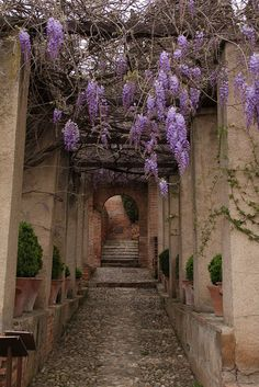 Alhambra, jardins du Generalife, Spain caminos oscurros