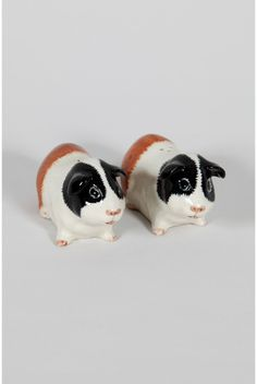 Guinea pig salt & pepper shakers