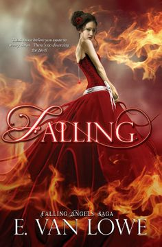 Diane's Book Blog .: Falling by E. Van Lowe: Interview & Giveaway