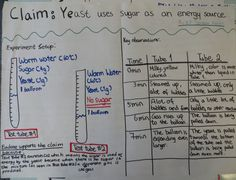 The claim thatYeast is a living organism started the process of investigation. My budding scientists have been thrown into the evidence machine and are working like crazy to collect evidence (the …