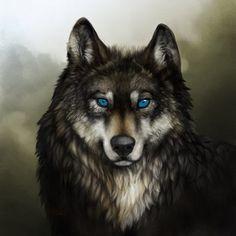 Résultats de recherche d'images pour « loup dessin »