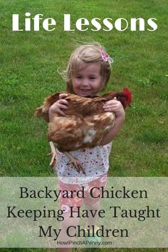 4 Lessons Keeping Backyard Chickens Have Taught My Kids from How I Pinch A Penny.com