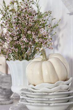 Autumn in the cottage kitchen