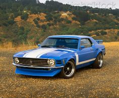 1970 Ford Mustang Trans Am Coupe Blue Mustang, Ford Mustang Shelby Cobra, 1970 Ford Mustang, Shelby Gt500, Mustang Cars, Ford Mustangs, Mustang Emblem, Trans Am, Ford Motor Company