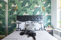 Chelsea, Manhattan: A classic Martinique wallpaper paired with bronze wall sconces transfo...