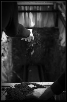 funeral photography - Google Search