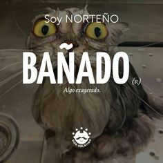 18 Best Soy norteño images in 2016 | Mexican kitchens, Mexican food