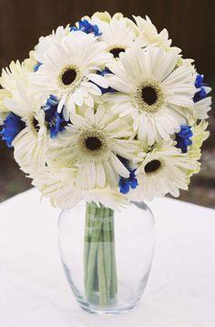 Blue Gerber Daisy | KellysFlowers_Ivory Gerber Daisy with Blue Delphinium Bridal Bouquet ...