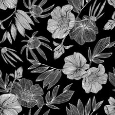Black and White Linear Floral